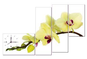 Tranh đồng hồ hoa lan vàng HL0119