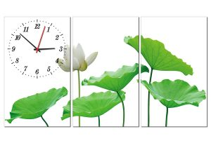 Tranh đồng hồ hoa sen trắng HL0142