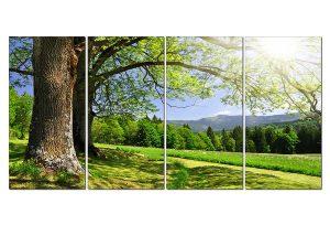 Tranh thiên nhiên  Sồi xanh TN0133