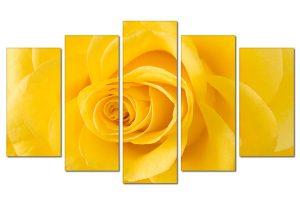 Tranh treo tường hoa hồng vàng HL0172