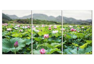 Tranh treo tường hoa sen TN0110