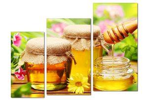 Tranh treo tường mật ong spa Sp0107