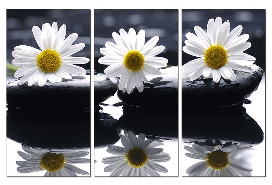Tranh-treo-tường-hoa-cúc-Sp0106